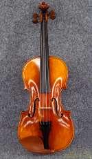 その他サイズ ヴァイオリン|CARLO GIORDANO