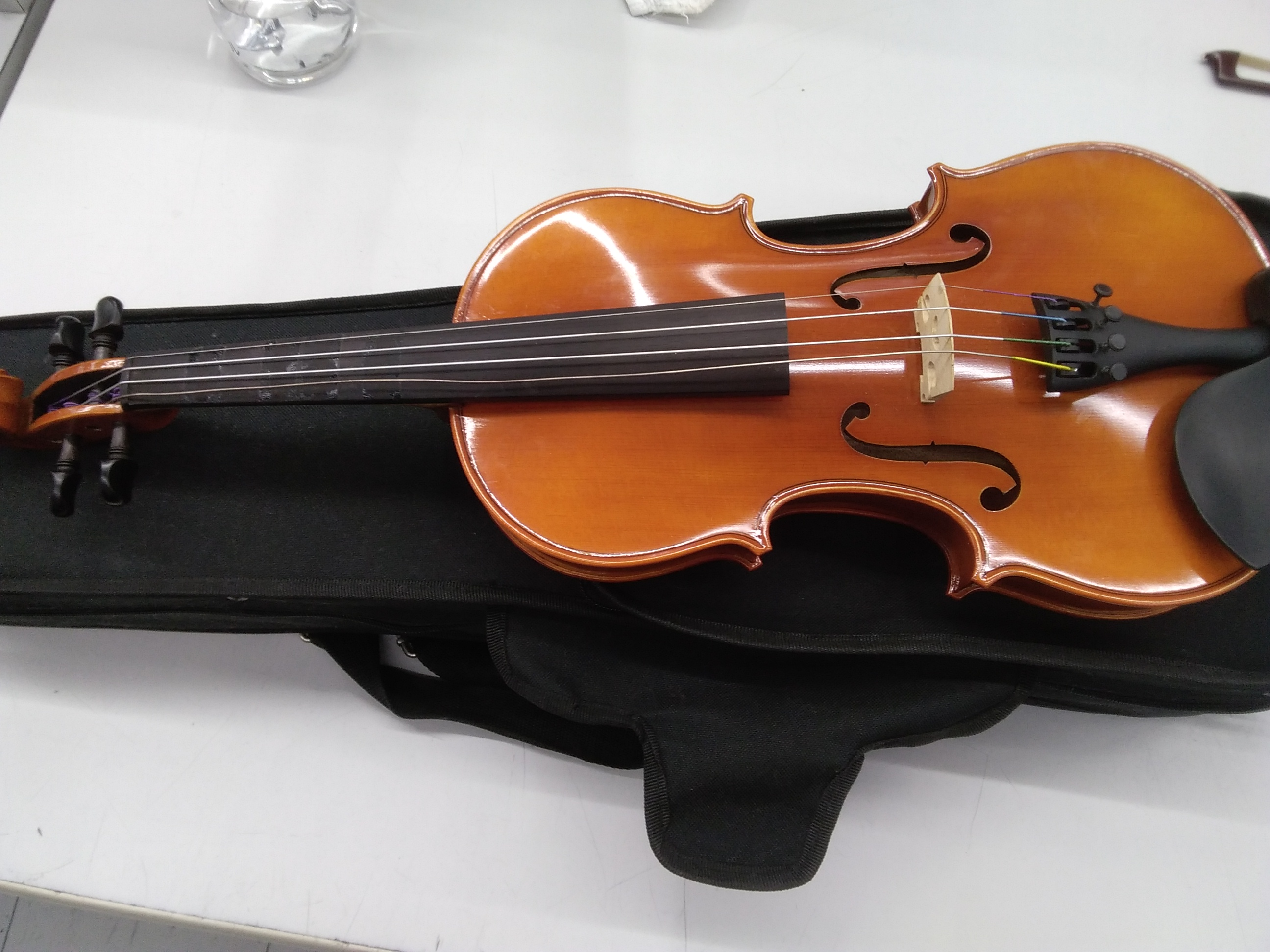 その他サイズ ヴァイオリン|ANDREAS EASTMAN