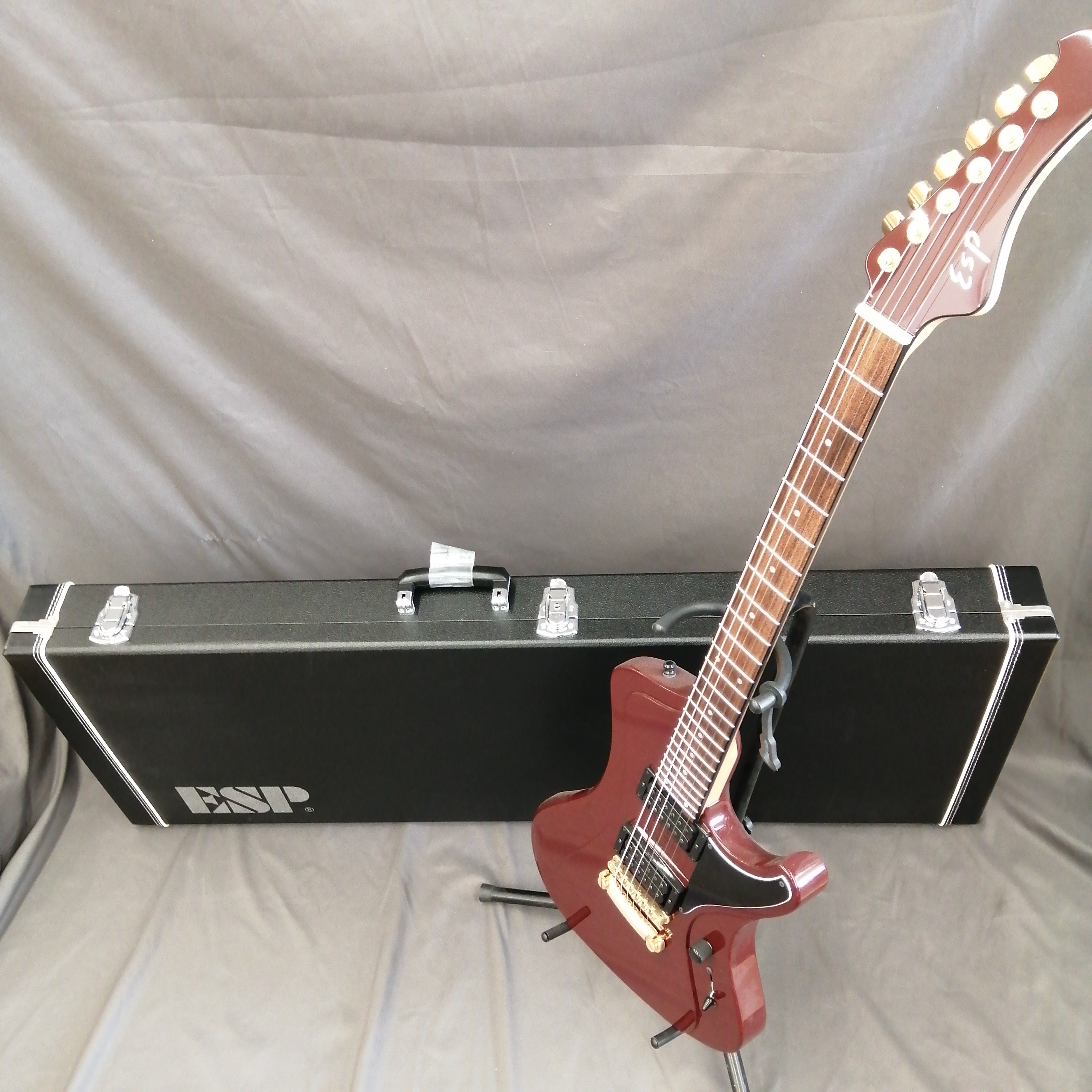 【オーダーメイドギター】 ESP