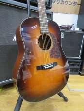 アコースティックギター|MORRIS