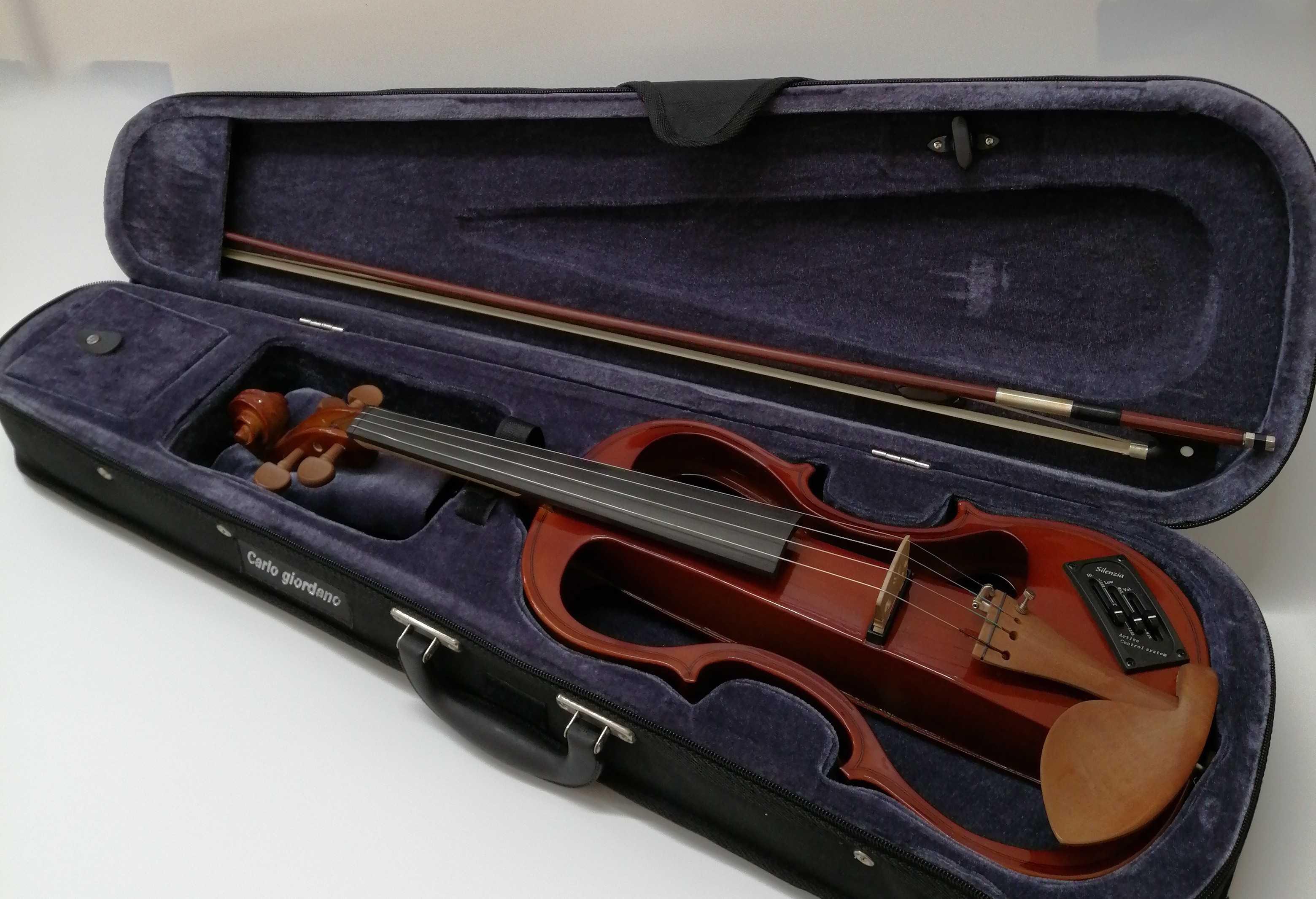 エレキバイオリン|CARLO GIORDAMO