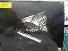 未使用品 ピアノコンサートプレーヤー|SEGA TOYS