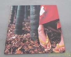 スピッツ 花鳥風月|Polydor Records