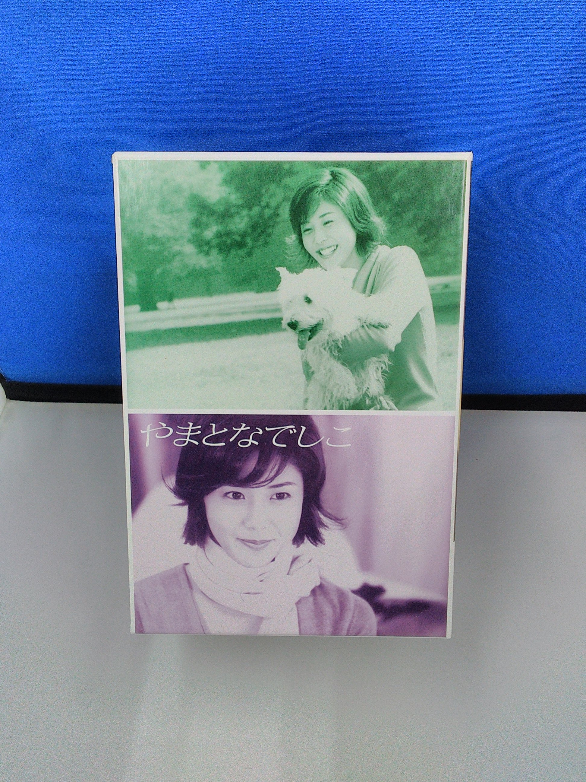 やまとなでしこ DVD-BOX フジテレビ