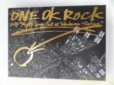 """ONE OK ROCK 2014 """"Mighty Long Fall at Yoko """