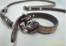 犬用首輪、リード|COACH