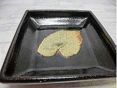 唐津 木葉 鉢|14代太郎右衛門窯
