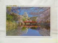 日本旅行 桜咲く姫路城|アップルワン